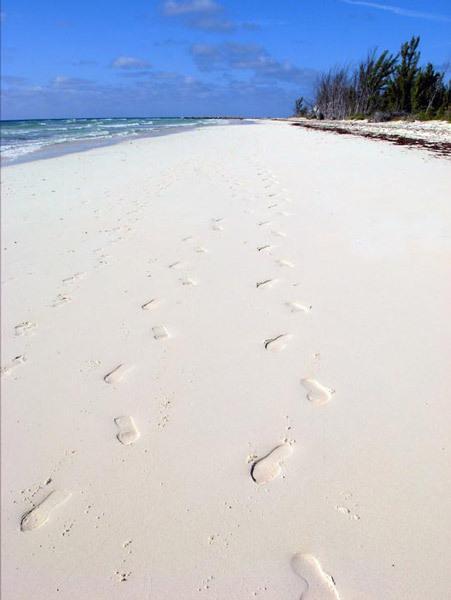 Deserted William's Town Beach