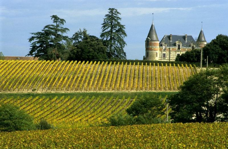 Walks in the vineyards... strewn with sumptuous chateaux