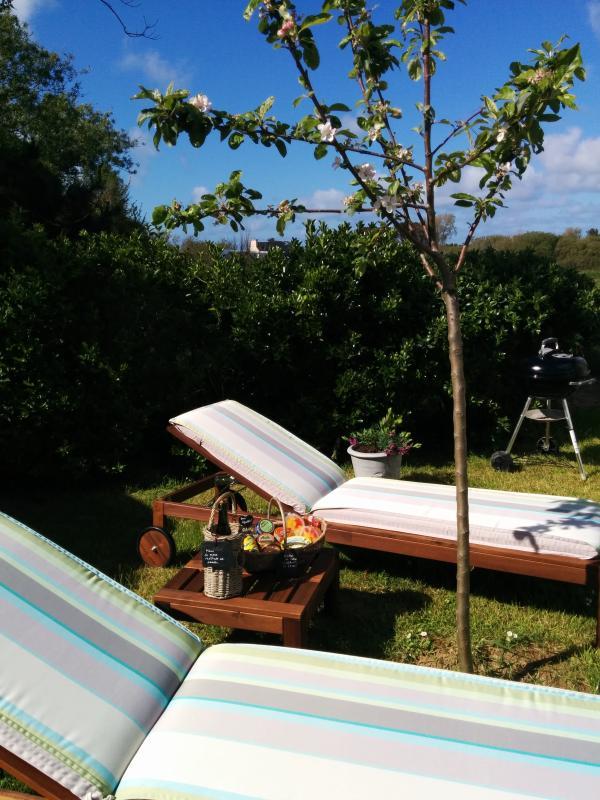 Farniente garantie sur ces bains de soleil avec ses matelas moelleux... Des pommes en saison...