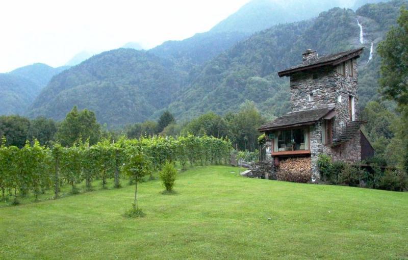 Among vineyards