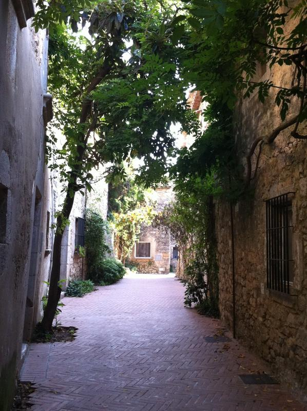 Lovely little street at San Marti de Empurias