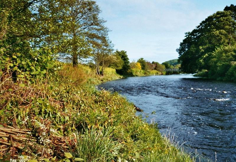River Cree from the river bank in front of Tigh na Cree