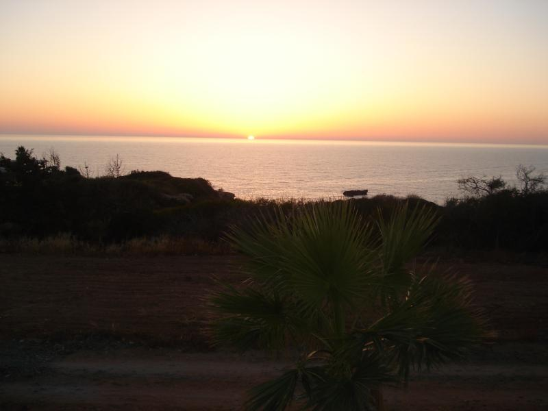 the best sunset in cyprus