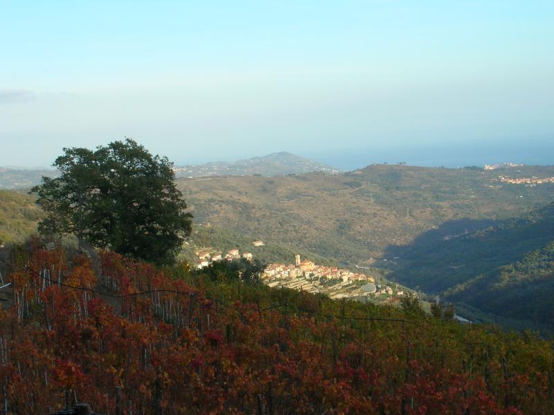 view of Pietrabruna from 'Bellonio' in autumn