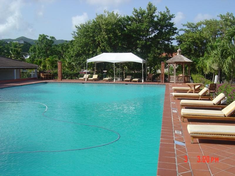 Large family outdoor swimming Pool/Bar