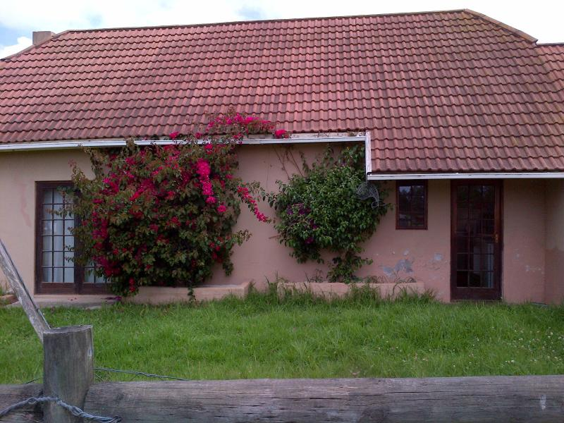 Misty Cottage in the heart of the Garden Route