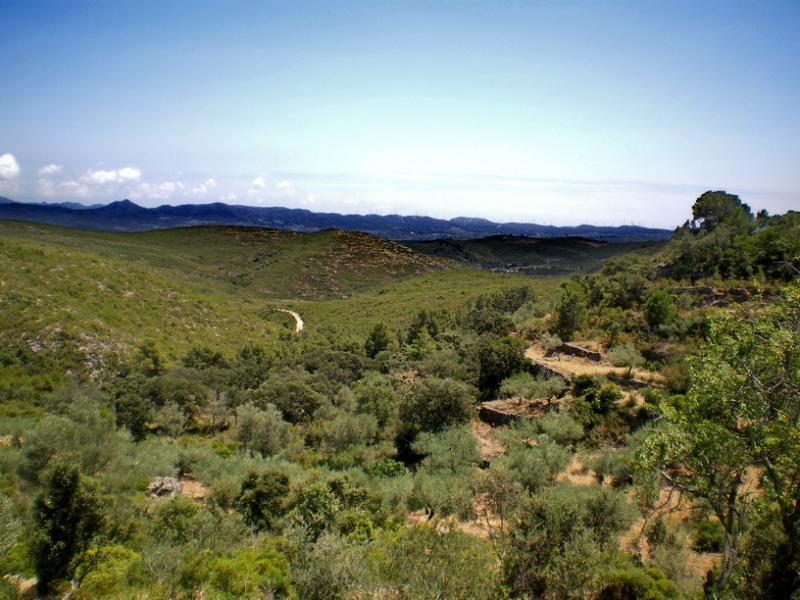 One of the panoramic views from the finca windows