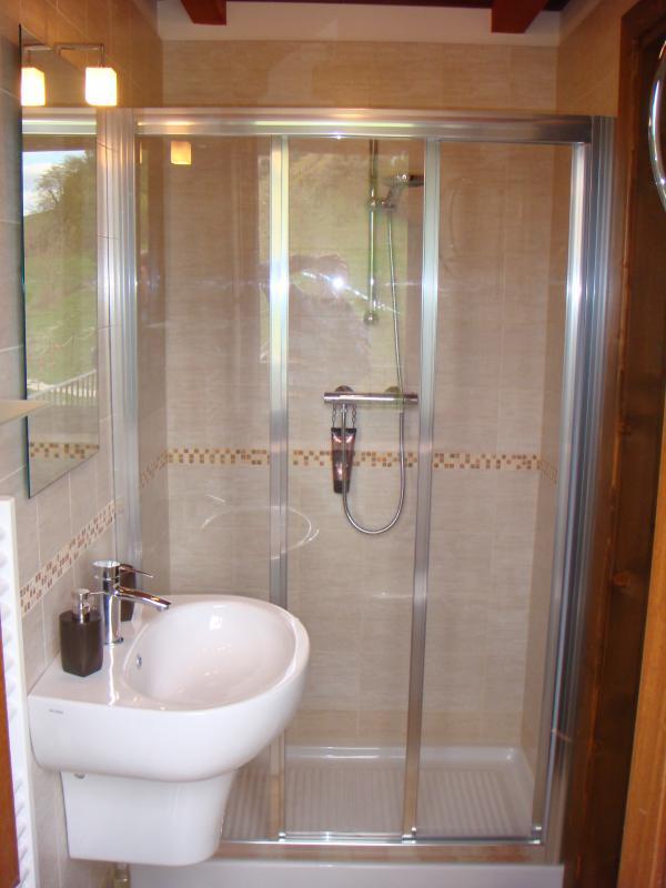 RONDINE modern en-suite bathroom with walk-in shower