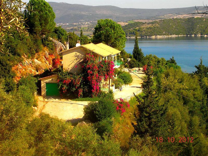Villa del Arte on the hillside