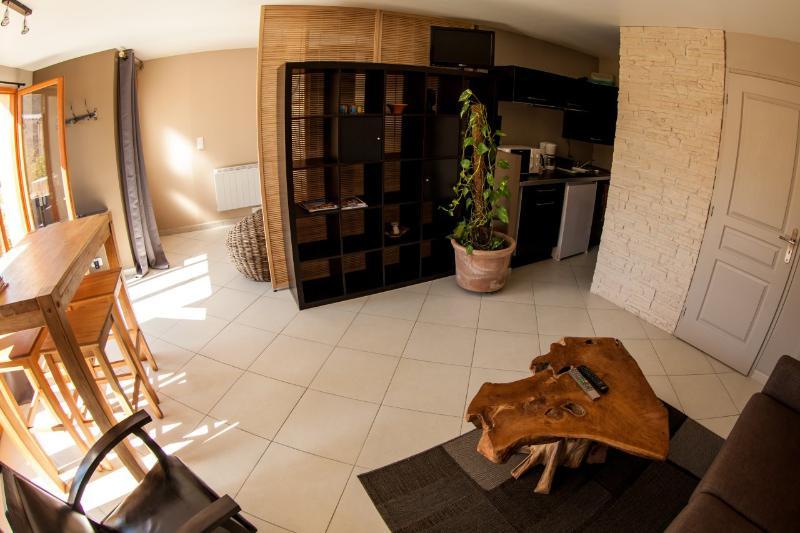 Studio/apartment