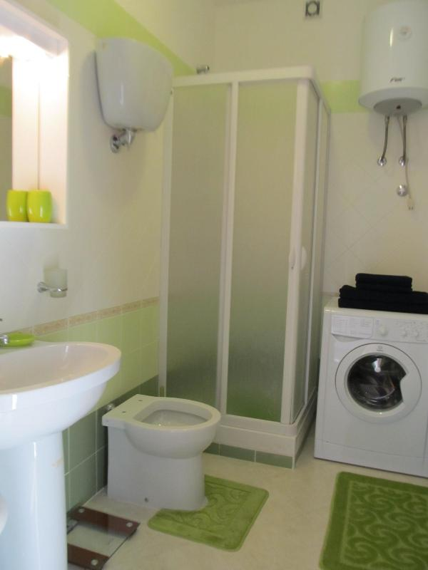 Large bathroom with shower, washing machine and wc