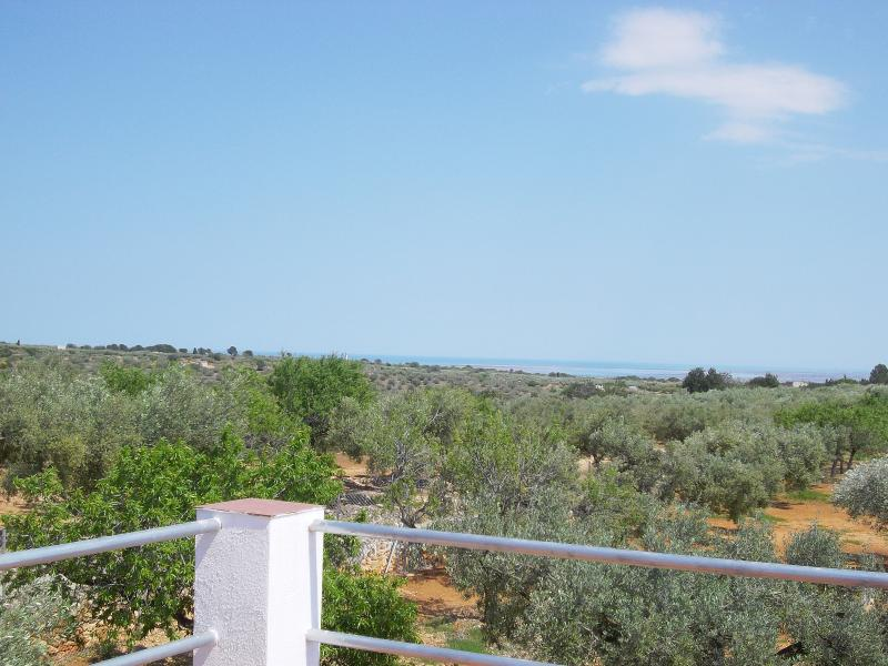 The sea from the roof terrace