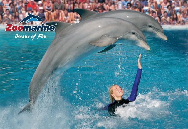Zoomarine SeaLife Park