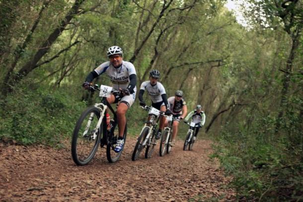 just1km from our place there is a wonderful pinewoods where you can go for a ride or joggin