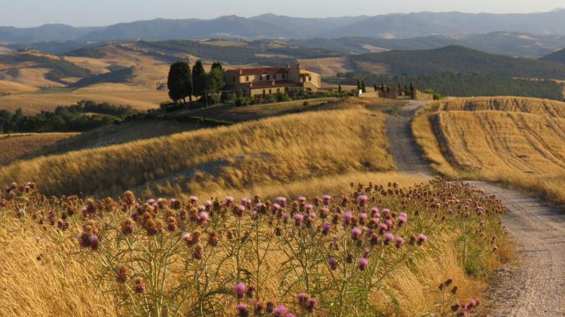 View of Podere Pianuggiole from the road