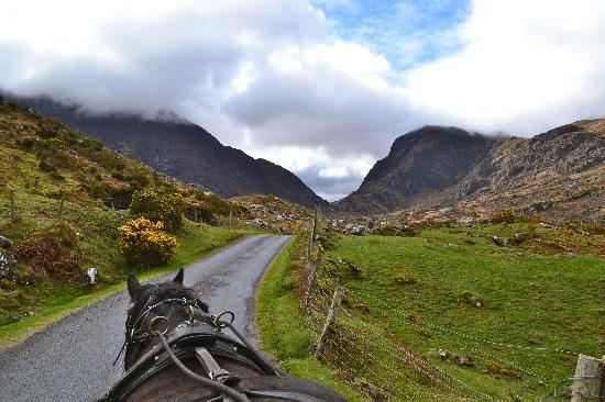 Trotting along in Kerry