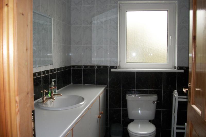 Salle de bain avec lavabo, WC, douche électrique sur bain