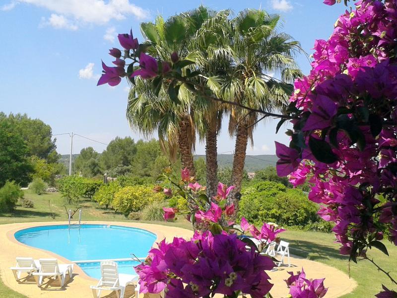 piscina vista desde la casa