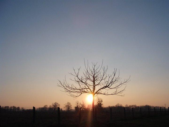 Magnifiques couchers de soleil depuis le jardin privé de The Grange