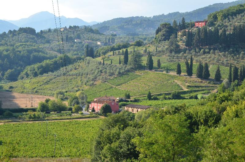 Marietto's House: Rustic Tuscan villa near historic Lucca, holiday rental in Lucca