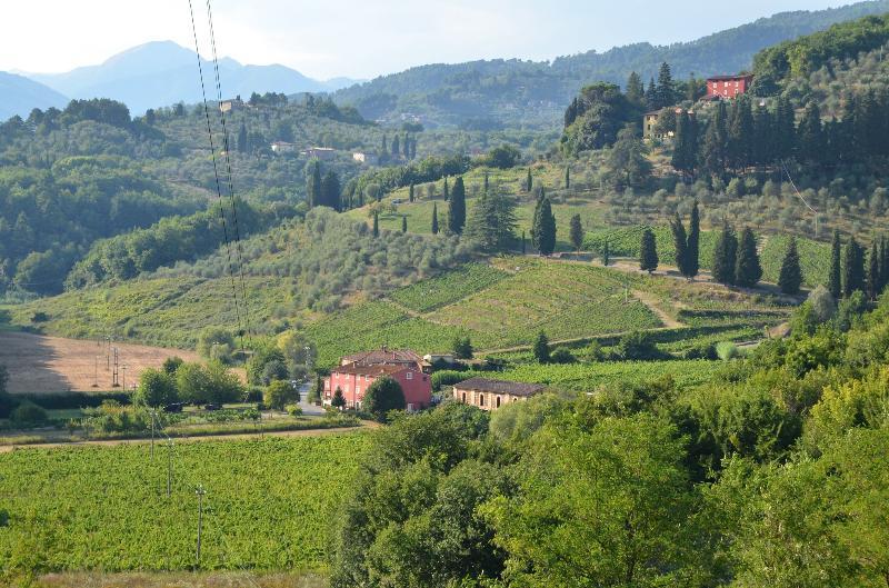 Marietto's House: Rustic Tuscan villa near historic Lucca, holiday rental in Gugliano