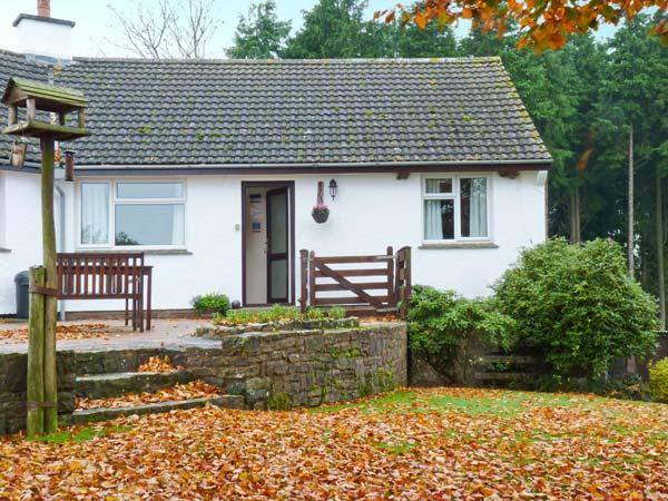 STAGSHOLT LODGE, cosy annexe, romantic retreat, walks from door, in Washfield, holiday rental in Oakford
