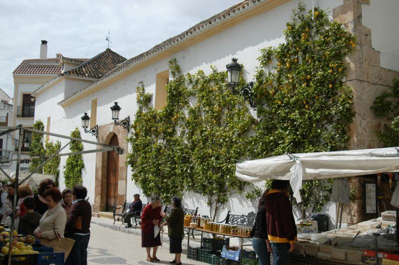 Ojen, gateway to Sierra de la Nieves - ideal for walkers