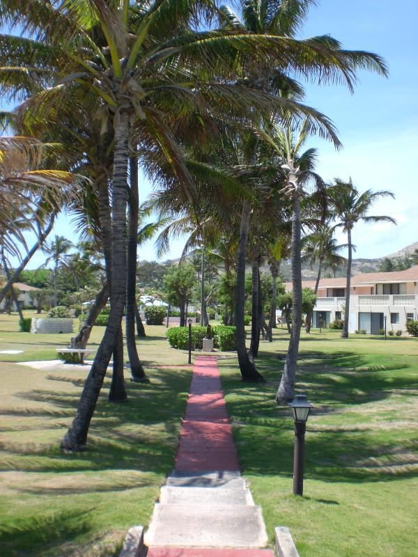 A view of the garden from the seashore.