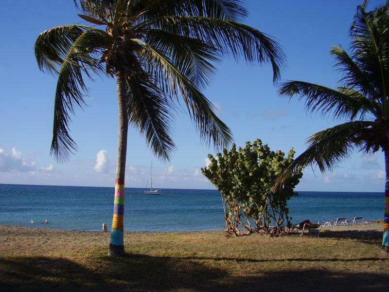 The Caribbean is a five minute walk away