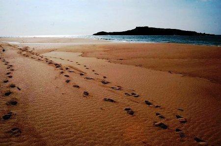 Beach Peach Island (Porto Covo)