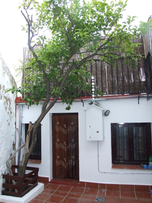 Lemon Tree patio, perfect for cooling down in summer!