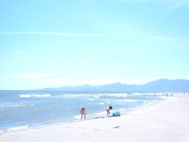 Beautiful beaches near Perpignan under an hour's drive away
