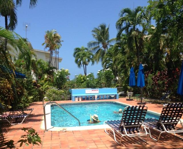 swimming pool & sunbeds plus umbrellas, freshwater shower behind pool bench & beach & sea beyond