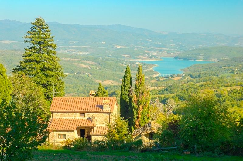 Main farmhouse w shared swimming pool, vacation rental in Caprese Michelangelo