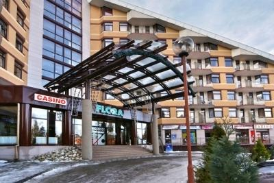 Flora main one-bedroom ski apartment 423, vacation rental in Borovets