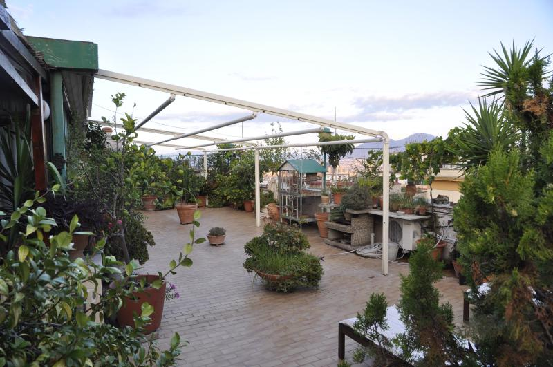 The roofgarden with its marvellous plants and flowers