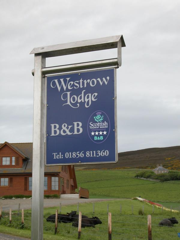 Westrow Lodge Bed and Breakfast