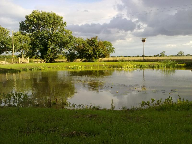 Your own private fishing lake and wildlife area