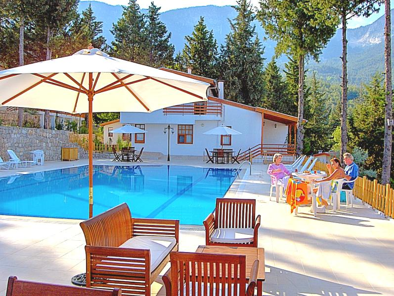Turkey Holiday Homes Villa  Beycik pool sea forest view Turkey., holiday rental in Beycik
