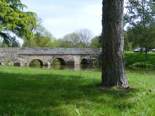 Bridge in Village