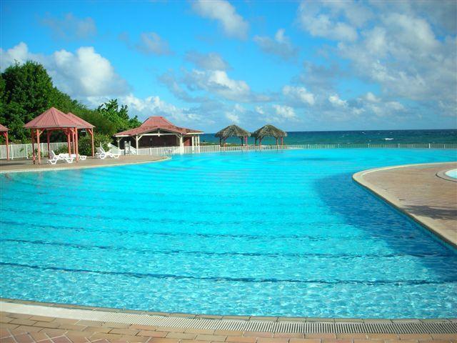 piscine 1000 m2 de la résidence