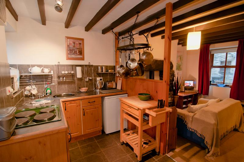Llondy, Penmachno - Cosy cottage in Snowdonia near Betws-y-Coed, vacation rental in Dolwyddelan