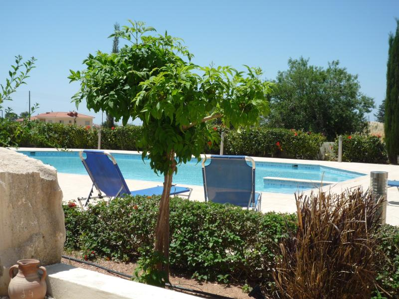 A wonderful place to relax and enjoy the sunny days by the swimming pool (view from private terrace)