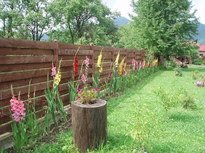 Flores en julio