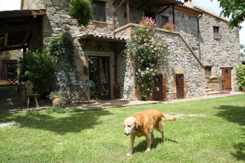 Podere Porcino  Casa Desiderio, Ferienwohnung in San Michele in Teverina