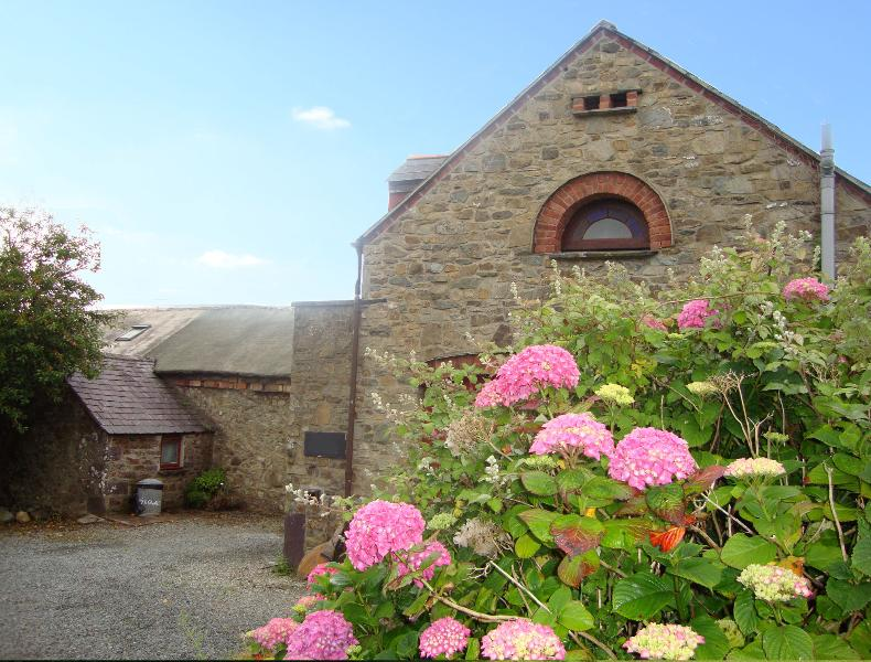 Ty'r Gwalch Solva pet friendly Holiday Cottage