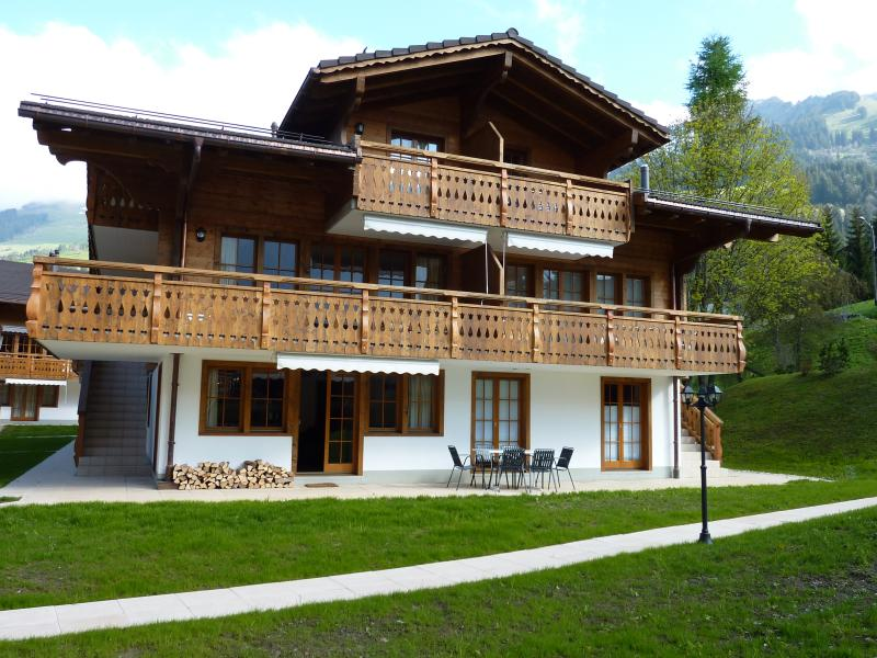 Traditional Swiss Chalet Style Apartment