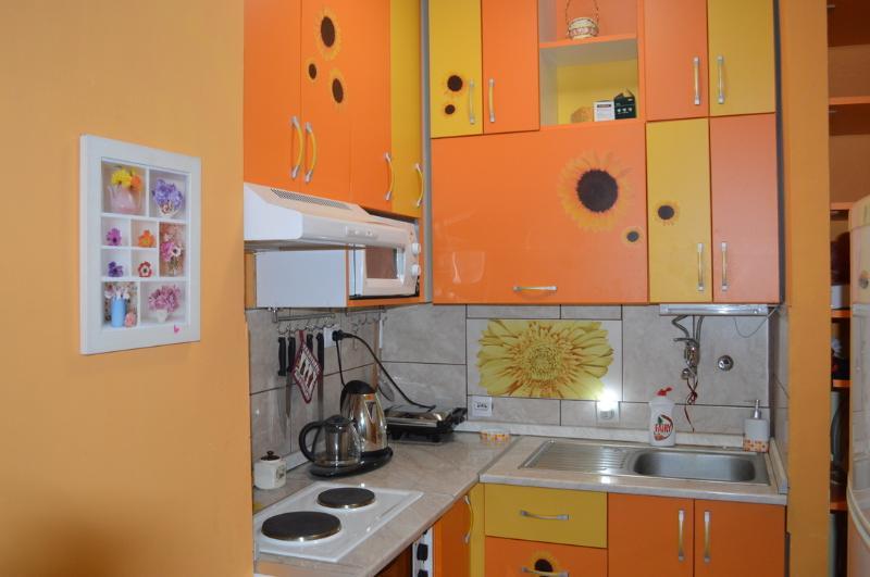 Apartment Valencia inPozarevac, holiday rental in Smederevo