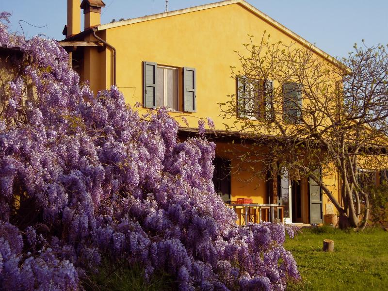 La Casa Toscana: perfect location in a farmstay only 6 kms by the sea!, alquiler vacacional en Castagneto Carducci