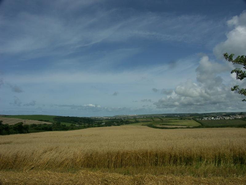 Blick vom Doppelzimmer über die Felder.